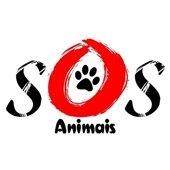 S.O.S - Animais